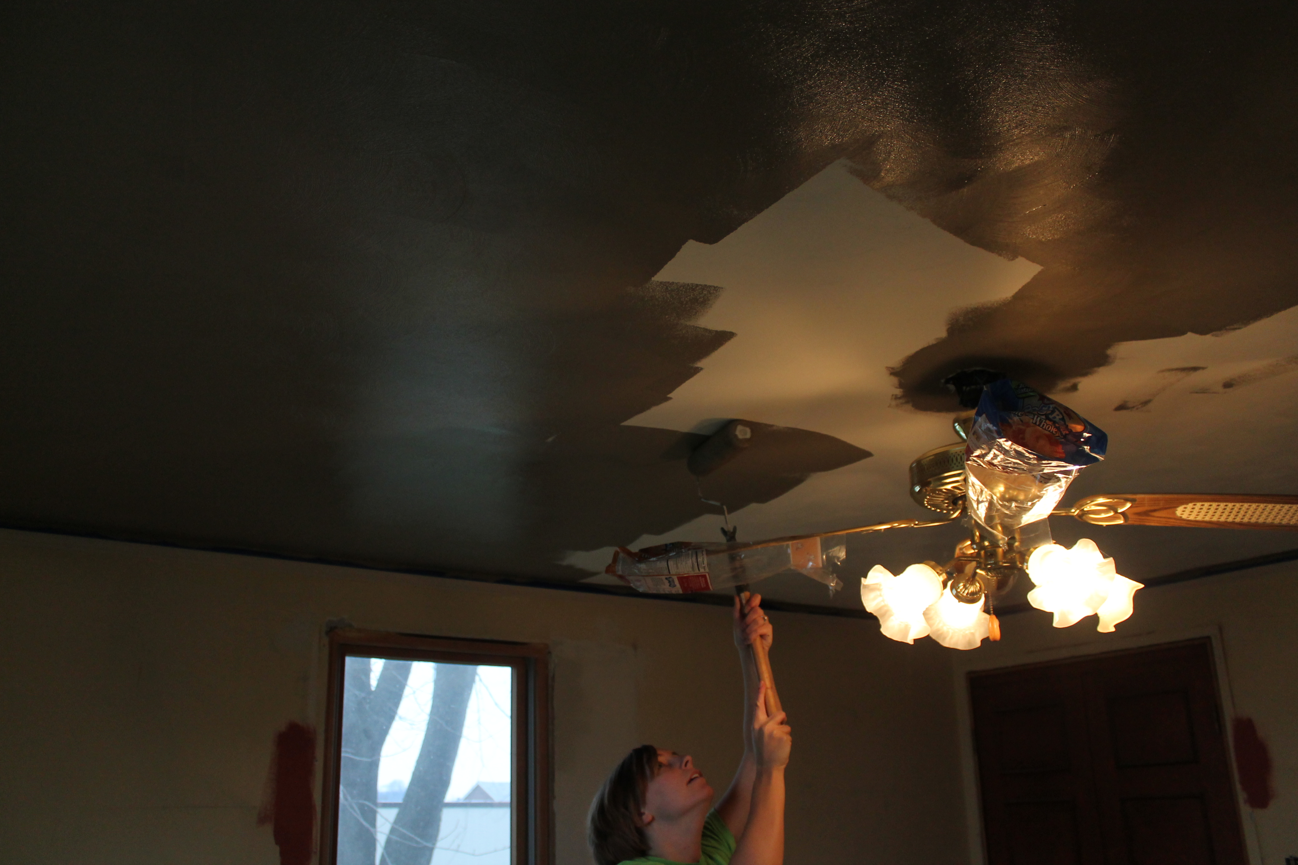 painting a ceiling dark whilst having a terrible haircut