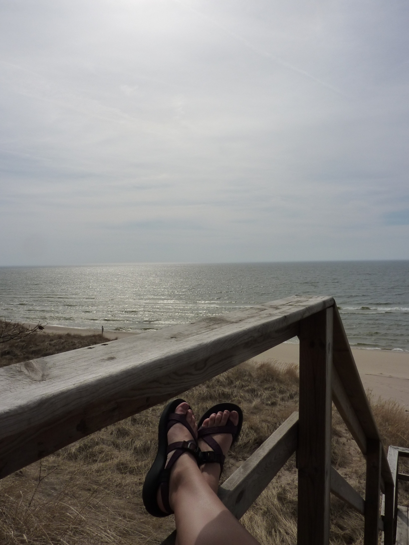 Lake Michigan Chaco  Pic