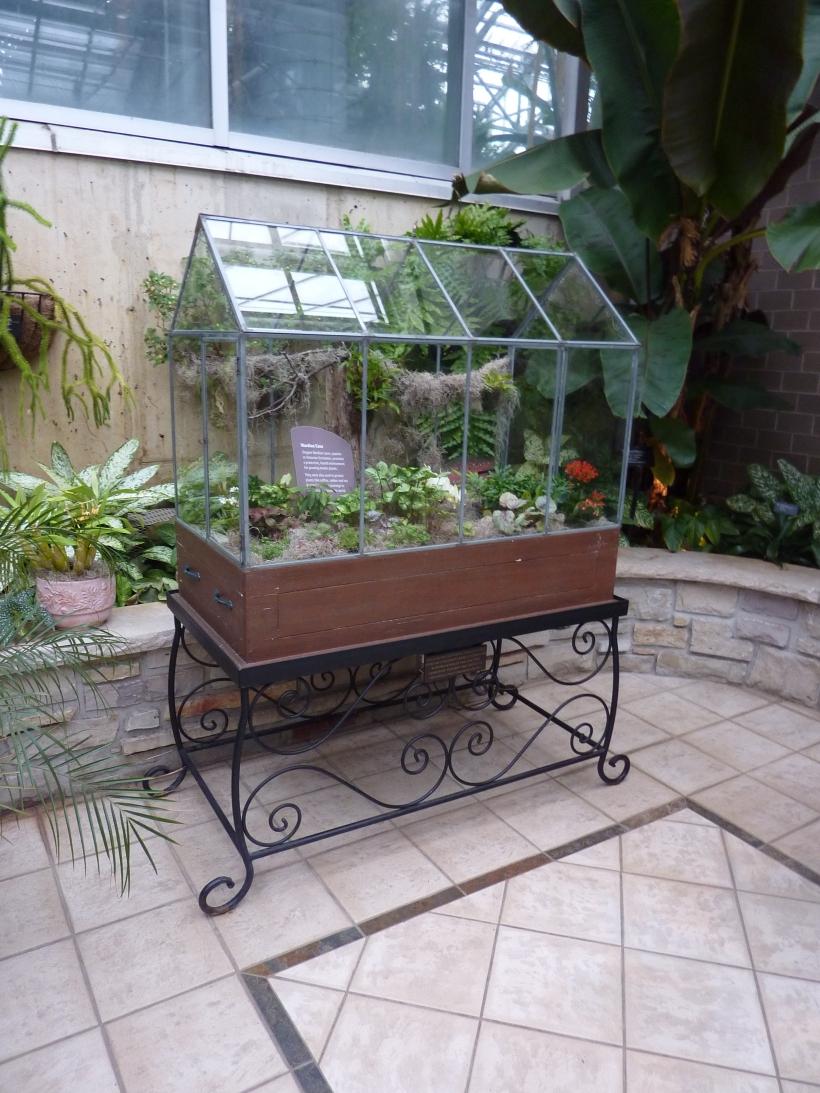 frederick meijer gardens victorian terrarium